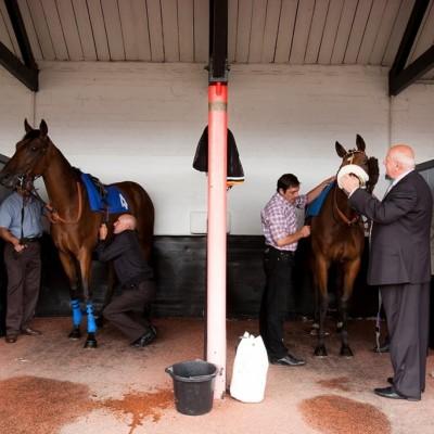 Ladies day, Pontefract Racecourse